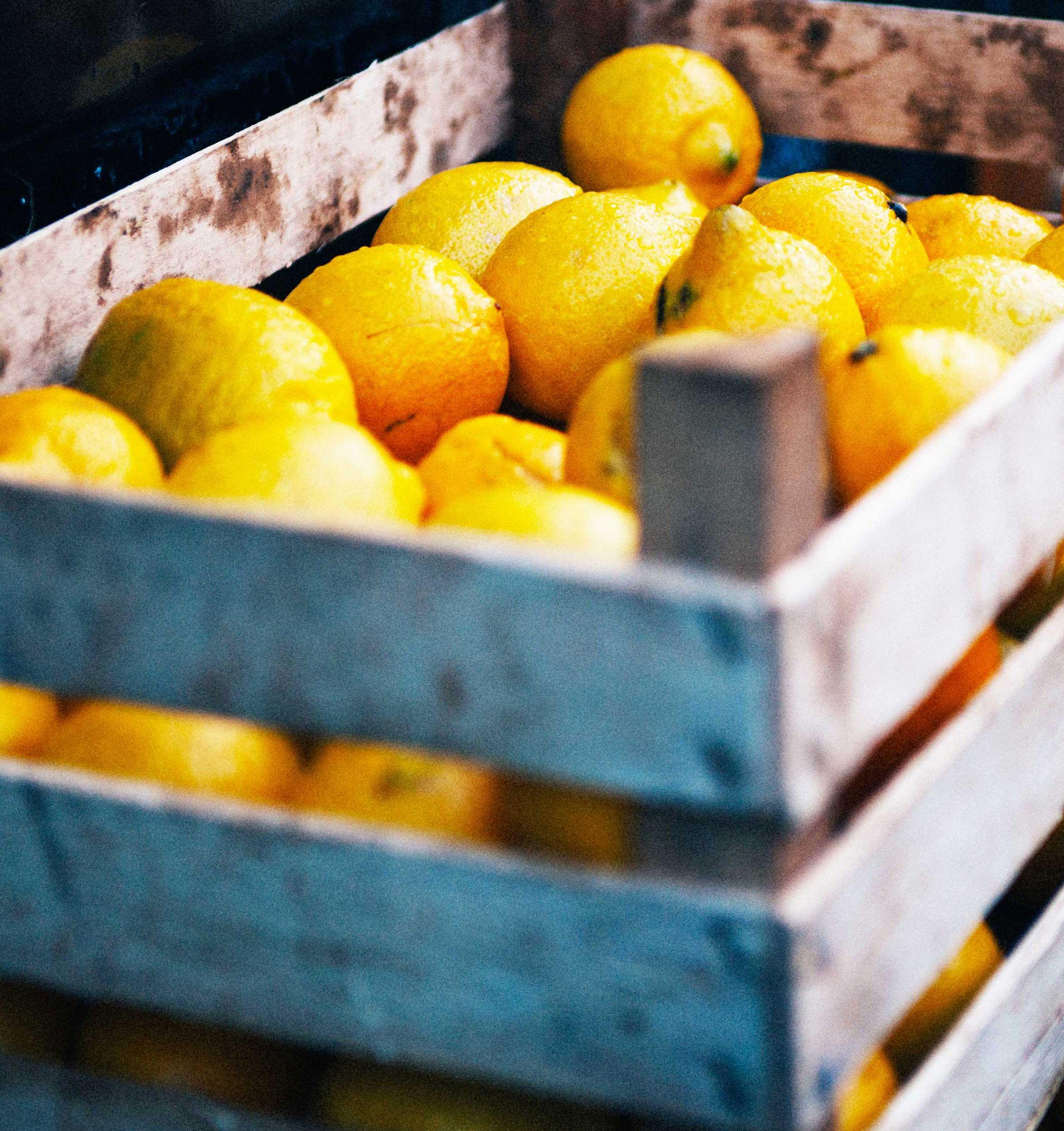 Lemons in wood crate.